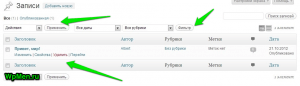 Раздел Записи в WordPress.