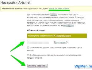 Ввод ключа для активации плагина Aksimet.
