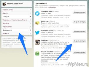 Доступ сторонних сервисов к Twitter аккаунту.