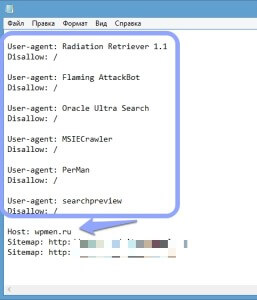 Настройка Robots.txt для ускорения сайта