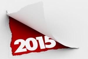 Планы на 2015 год
